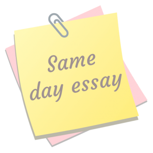 same day essay