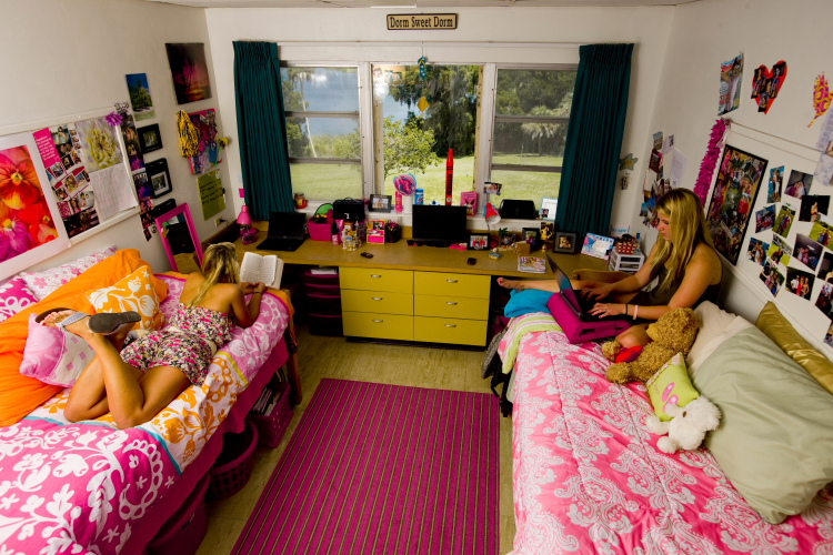 home vs dorm essay example Free essay on dorm live vs home life available totally free at echeatcom, the largest free essay community.