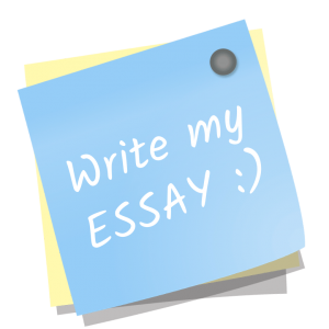 write my essay for me